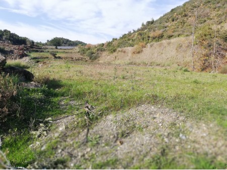Alanya Yeşilöz'de Satılık Tarla